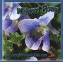 Wildwood Flower and Many Other Favorite Fiddle Tunes,Carrell Family